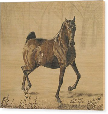 Mistical Horse Wood Print by Melita Safran