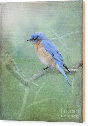 Wood Print featuring the photograph Misty Blue by Betty LaRue