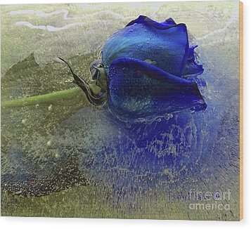 Misty Blue Wood Print by Terry Foster