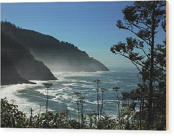 Misty Coast At Heceta Head Wood Print