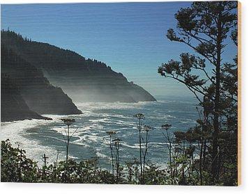 Misty Coast At Heceta Head Wood Print by James Eddy