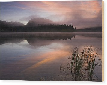 Misty Dawn Wood Print by Mike  Dawson
