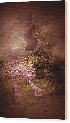 Misty Deer Wood Print