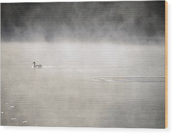 Misty Duck Wood Print