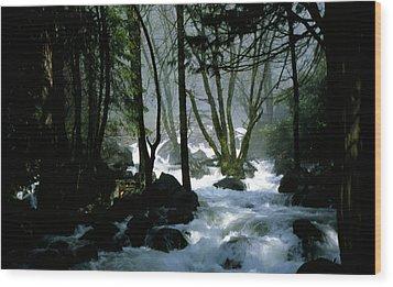 Misty Forest Wood Print by Joe Darin