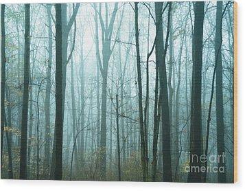 Misty Forest Wood Print by John Greim