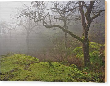 Misty Forest Wood Print