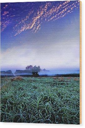 Misty Frost Wood Print by Phil Koch