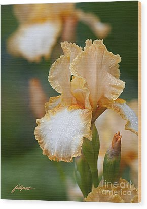 Misty Iris Wood Print