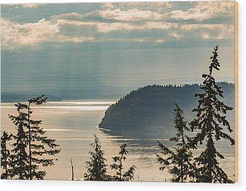 Misty Island Wood Print