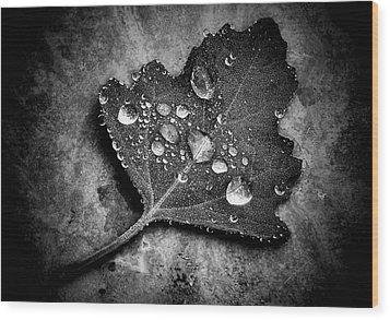 Misty  Wood Print by Karen Scovill