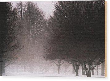 Misty Wood Print by Linda Shafer