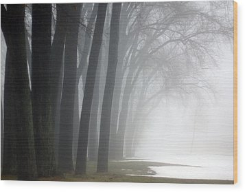 Misty Moments Wood Print by Linda Mishler