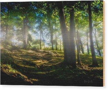 Misty Morning Wood Print by Bob Orsillo