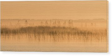 Misty Morning Floating Bog Island On Boy Lake Wood Print