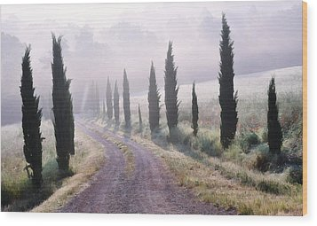 Misty Morning In Tuscany Wood Print by Marion McCristall