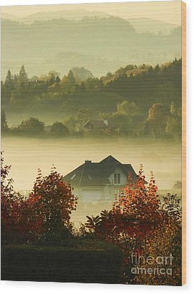 Misty Morning			 Wood Print by Mariola Bitner