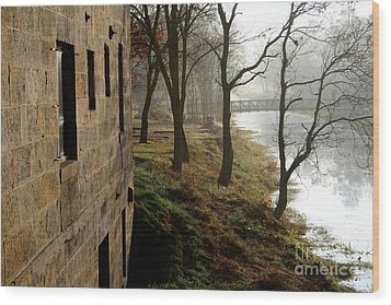 Misty Morning On The Illinois Michigan Canal  Wood Print