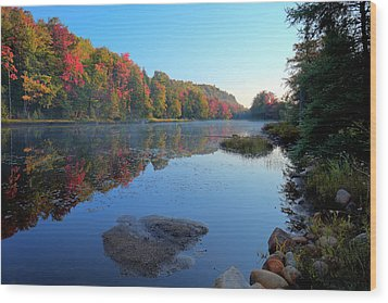 Wood Print featuring the photograph Misty Morning On The Pond by David Patterson