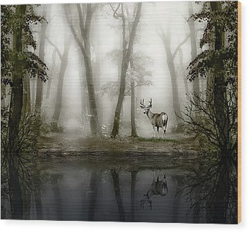 Misty Morning Reflections Wood Print