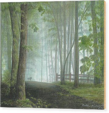 Misty Morning Visitor Wood Print by Carla Kurt