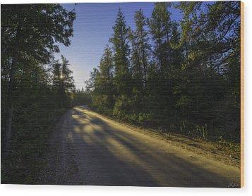 Misty Morning Walk Through The Woods Wood Print