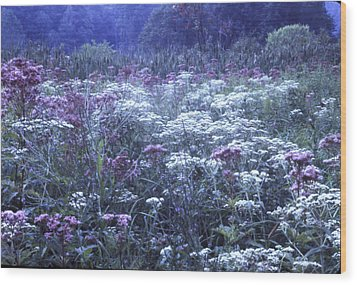 Misty Morning Wildflowers 3 Wood Print