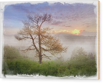 Misty Mountain Wood Print by Debra and Dave Vanderlaan