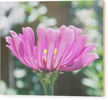 Misty Purple 3 Wood Print by Susan Vineyard