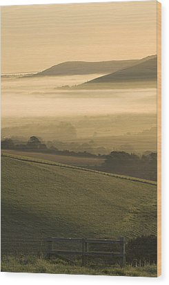 Misty South Downs Wood Print by Hazy Apple