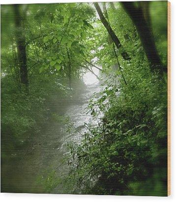 Misty Stream Wood Print by Tina Valvano