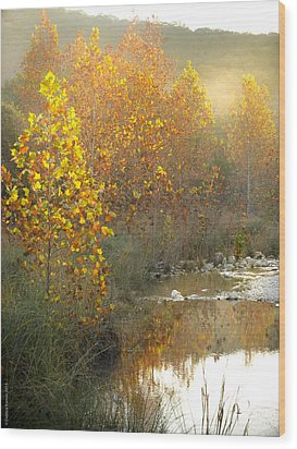 Misty Sunrise At Lost Maples State Park Wood Print by Debbie Karnes