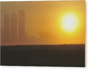 Misty Sunrise Wood Print by Dan Myers