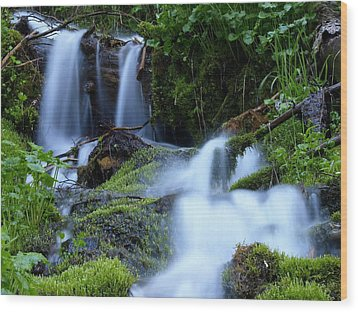 Wood Print featuring the photograph Misty Waters by DeeLon Merritt