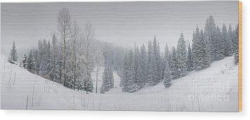 Misty Winter Panorama Wood Print