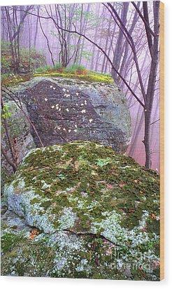 Misty Woodland Scenic Wood Print by Thomas R Fletcher