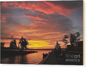 Mitchell State Park Cadillac Michigan Wood Print by Terri Gostola