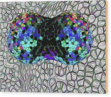 Mitosis Between Consenting Cells Wood Print by Bruce Iorio