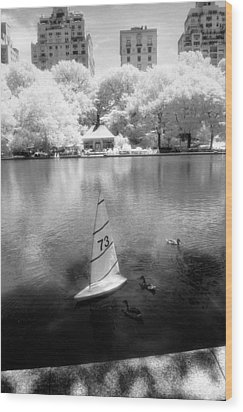 Wood Print featuring the photograph Model Boat Lake Central Park by Dave Beckerman