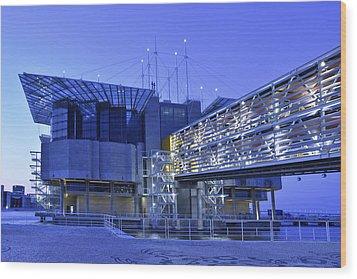 Wood Print featuring the photograph Modern Lisbon Aquarium by Marek Stepan