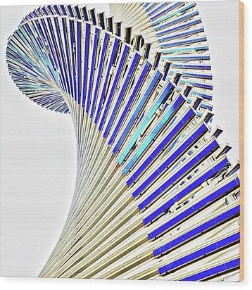 Modern Twist Sculpture Wood Print