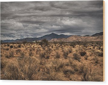 Wood Print featuring the photograph Mojave Landscape 001 by Lance Vaughn