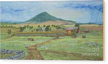 Mole Hill Panorama Wood Print by Judith Espinoza