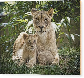 Mom And Baby Wood Print by Cheri McEachin