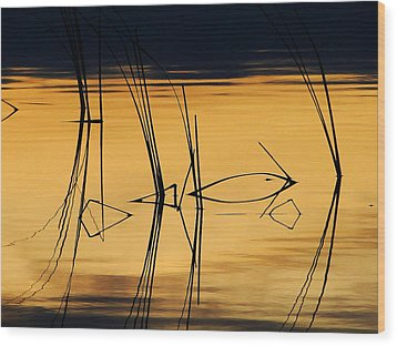 Wood Print featuring the photograph Momentary Reflection by Blair Wainman