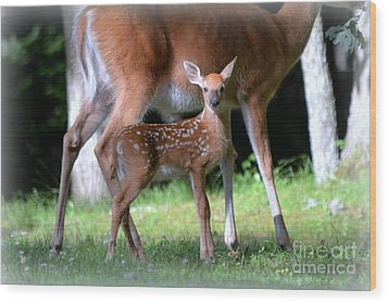 Wood Print featuring the photograph Mommy And Me by Brenda Bostic