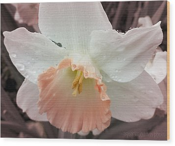 Mom's Birthday Daffodil Wood Print