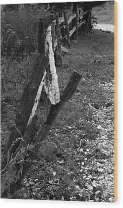 Wood Print featuring the photograph Momsvisitfence2 by Curtis J Neeley Jr
