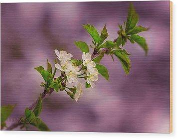 Mon Cherry Wood Print by Bulik Elena