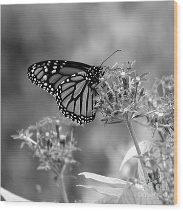Wood Print featuring the photograph Monarch Butterfly In Bw by Laurinda Bowling